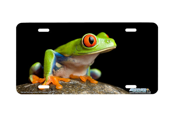 "Airstrike® 247-""Red Eye Tree Frog on Rock"" Green Tree Frog License Plates"