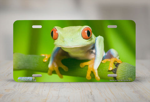"Airstrike® 246-""Red Eye Tree Frog"" Tree Frog License Plate"