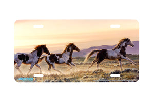 "Airstrike® 6522-""Early Morning Run"" Horse License Plates"