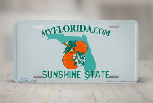 "Airstrike® 550-""Florida State License Plate""-Vanity License Plate"