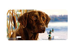 "Airstrike® 5310-""Morning Person"" Chocolate Labrador Dog License Plate"