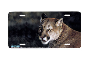 "Airstrike® 3138-""Close Up Cougar"" License Plate"
