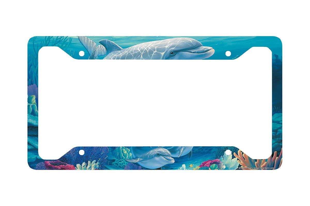 Beach License Plate Frames