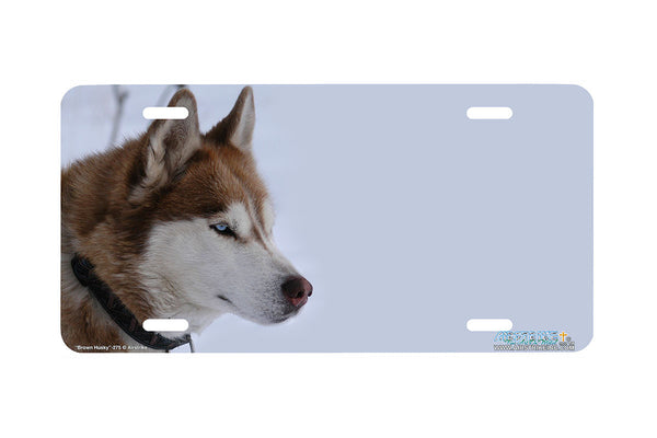 "Airstrike® 275-""Brown Husky"" Husky Dog License Plates"