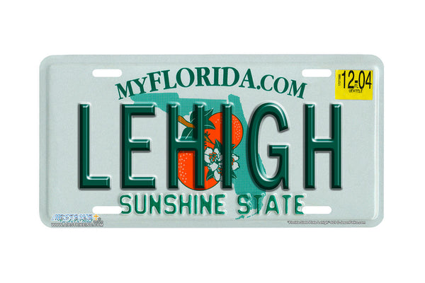 "Airstrike® 601-""Florida State Plate Lehigh""-License Plate"
