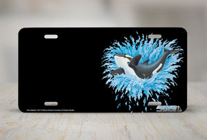 "Airstrike® Whale License Plate  3417-""Orca Splash"" Killer Whale License Plate"