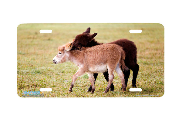 "Airstrike® 262-""Miniature Donkeys"" Donkey License Plates"