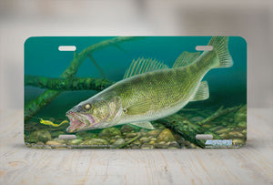 "Airstrike® Fishing License Plates 5225-""Eye Candy"" License Plate"