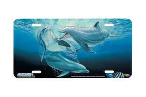 "Airstrike® Dolphin License Plate  3402-""Dolphin Play"" Dolphins License Plate"