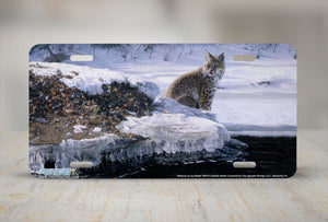 "Airstrike® 8270-""Bobcat on Icy Bank""-Bobcat License Plate"