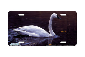 "Airstrike® 8256-""Reflection""-Swan License Plate"