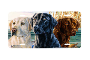 "Airstrike® 5373-""Lab Trio"" Yellow, Black, and Brown Lab Dogs License Plate"