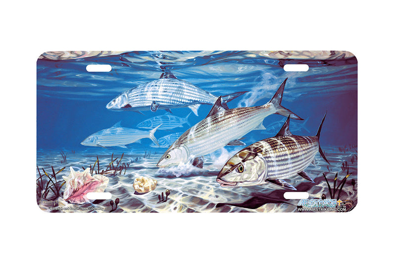 "Airstrike® Fishing License Plates 5009-""Bonefish and Conch"" License Plate"
