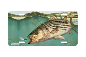 "Airstrike® Fishing License Plates 5014-""Striper"" License Plate"