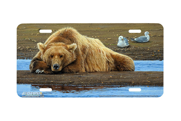 "Airstrike® 8246-""Riverside Siesta""- Grizzly License Plate"