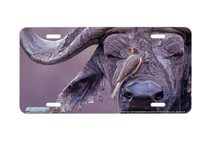 "Airstrike® 8217-""In Your Face""-African Buffalo License Plate"