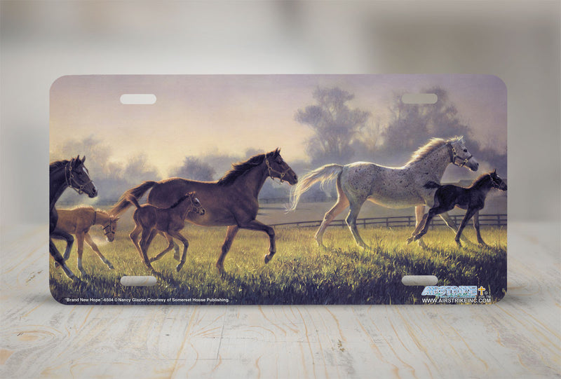 "Airstrike® 6504-""Brand New Hope"" Horse License Plates"