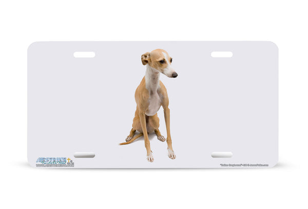 "Airstrike® 438-""Italian Greyhound"" Dog License Plates"