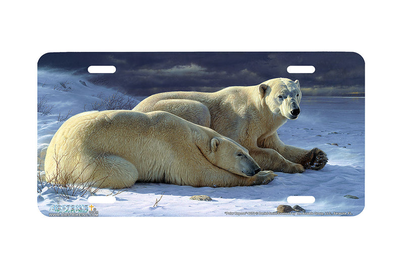 "Airstrike® 8272-""Polar Repose""-Polar Bears License Plate"