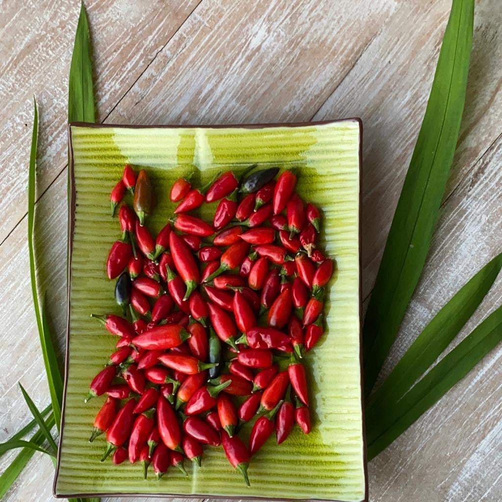 Chilli - The King of Spices & How it is used in Indian Cuisine
