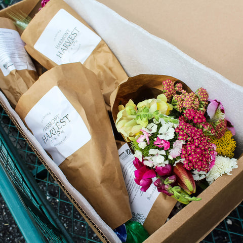 The Flower Party Box