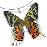 Whole Butterfly Pendant, Sunset Moth