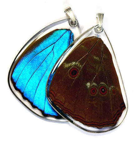 Butterfly wing pendant ONLY, Blue Morpho Menelaus Butterfly, bottom wing