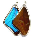 Butterfly wing pendant ONLY, Blue Morpho Menelaus Butterfly, top wing