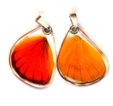 Butterfly wing pendant ONLY, Orange Albatross, bottom wing