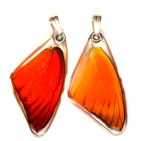 Butterfly wing pendant ONLY, Orange Albatross, top wing