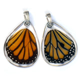 Butterfly wing pendant ONLY, Striped Tiger, bottom wing