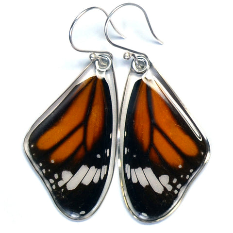 Butterfly earrings, Striped Tiger, top wings