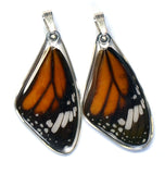 Butterfly wing pendant ONLY, Striped Tiger, top wing