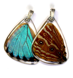 Butterfly wing pendant ONLY, Blue Morpho Portis, bottom wing