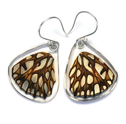 Butterfly earrings, Mexican Silverspot Butterfly, bottom wings