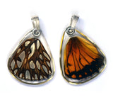 Butterfly wing pendant ONLY, Mexican Silverspot Butterfly, bottom wing