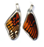 Butterfly wing pendant ONLY, Mexican Silverspot Butterfly, top wing