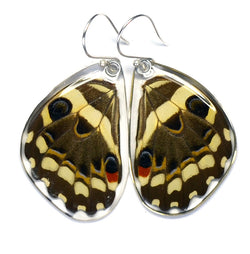 Butterfly earrings, Christmas Butterfly, bottom wings