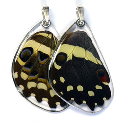 Butterfly wing pendant ONLY, Christmas Butterfly, bottom wing