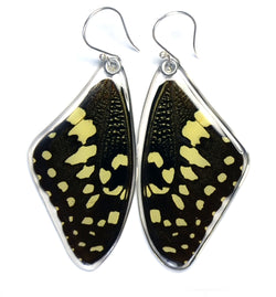 Butterfly earrings, Christmas Butterfly, top wings