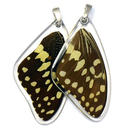 Butterfly wing pendant ONLY, Christmas Butterfly, top wing