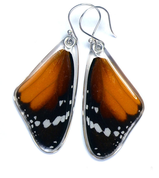 Butterfly earrings, African Monarch Butterfly, top wings