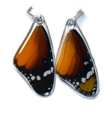 Butterfly wing pendant ONLY, African Monarch Butterfly, top wing