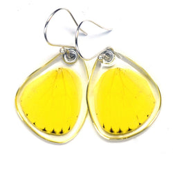 Butterfly earrings, Grass Yellow Butterfly, bottom wings