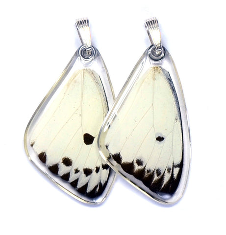 Butterfly wing pendant ONLY, Calypso Caper White Butterfly, top wing