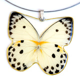 Whole Butterfly Pendant, Calypso Caper White Butterfly