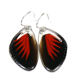 Butterfly earrings, Doris Longwing Butterfly, bottom wings