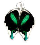 Butterfly earrings, Peacock Swallowtail Butterfly, bottom wings