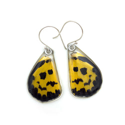 Butterfly earrings, False Tiger Butterfly, bottom wings