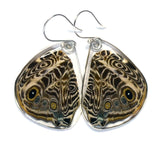 Butterfly Earrings, Blomfild's Beauty Butterfly, Bottom Wing